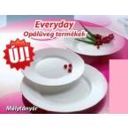 Everyday temperált üveg tányérok